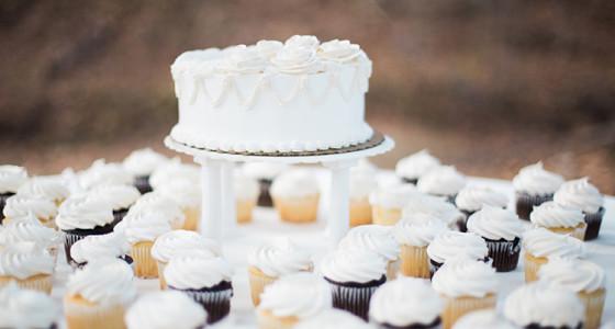 Brown County Weddings Reception